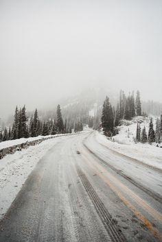 ignite light (bertymandagie: Winter in Washington.)