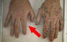 Muggen vinden het natuurlijk ook altijd lekker om je een bezoekje te brengen in de zomer. En wanneer je bij het water woont heb je helemaal veel last van die vervelende muggen. Hier thuis hebben wij er ook altijd heel veel last van. Daarom ben ik op zoek gegaan naar een natuurlijke muggenspray en kwam …
