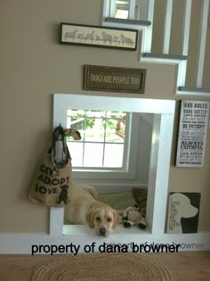 Indoor Doggy House Under The Stairs Keeps Gracie The Puppy Happy