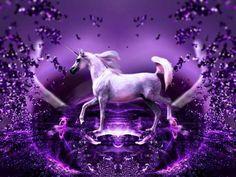 Purple Unicorn | Purple Wonder - Unicorns Wallpaper (10796171) - Fanpop fanclubs
