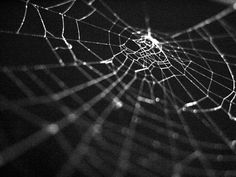 Satan's Web FHE Lesson - Taking advantage of the Halloween decorations in stores right now, this family home evening lesson shows how Satan tries to ensnare us in his web of sin. A nice visual to have up all month long - a big spider web with word strips of different temptations or sins.