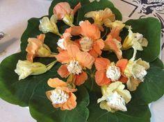 Stuffed Nasturtium Flowers Recipe - Genius Kitchen (make with vegan cream cheese etc) Chive Blossom, Flower Food, Fresh Chives, Lemon Balm, Edible Flowers, Food Plating, Herbalism, Cooking Recipes, Cooking Ideas