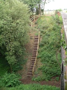 Beautiful steps on steep slope - we need to do this at our homestead!