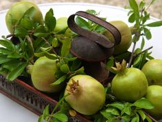 unripened pomegranates & greenery in a rustic container ❀ ~  ◊  photo via 'french essence' blogspot