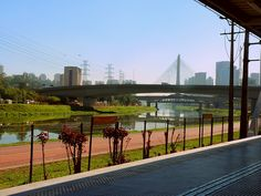 Rio Pinheiros - São Paulo (by rastafarianpopulation)