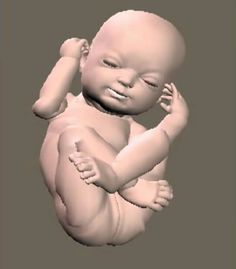 Figure of a child still in the mother, from 3D sonogram. Amazing.