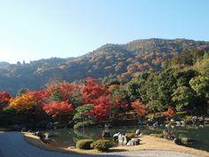 京都  天龍寺。