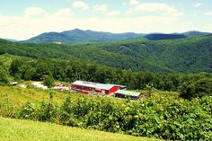 Road Trippin' down the Blue Ridge Music Trails!