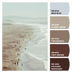 beach surf muted pale light aqua blues warm and cool browns easy going laid back basement boys room bedroom laundry room colors earthy calm serene Paint colors from Chip It! by Sherwin-Williams #chipit #sherwinwilliams