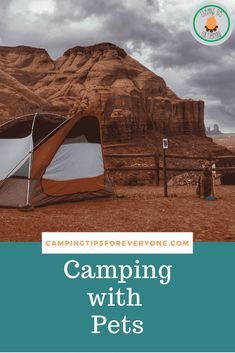 Tips and tricks for camping with dogs. How to get started and how to ensure your pet has a great time camping! Camping With Cats, Camping Water, Camping Glamping, Camping Hacks, Family Camping, Tent Camping Organization, Road Trip With Dog, Hiking Dogs, Dog Travel