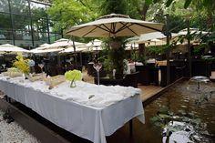 梧桐-大堂-环境-大堂图片-北京美食-大众点评网