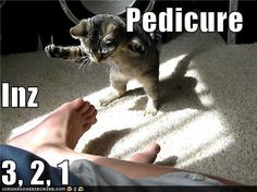 Pedicure or acupuncture...either way, the countdown has started.