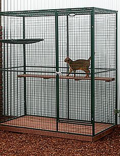 Indoor Cat Cages Enclosures for 2020 - Ideas on Foter Indoor Cat Enclosures, Catio Ideas For Cats, Cat Cages Indoor, Parrot Play Stand, Bird Cage Design, Cat Playpen, Pet Bird Cage, Cat Kennel, Grooming Shop