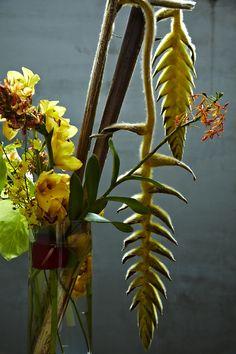 Azuma Makoto Works 【野菜花】 Botanical Sculpture.  Cramped Punk Gallery vol.7 mishima taiyo.