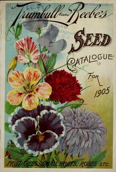 1908 Turnbull & Beebe's Seed Catalogue