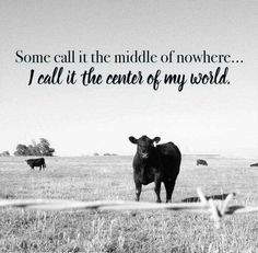 Love of the country farm life~ Cow Quotes, Horse Quotes, Smile Quotes, Wisdom Quotes, Animal Farm Quotes, Crush Quotes, Quotable Quotes, Country Girl Quotes, Country Girls
