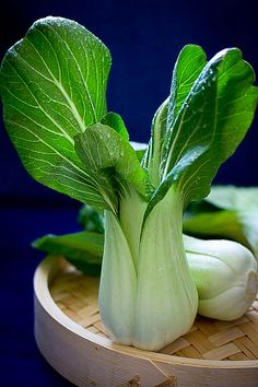 Pak choi | Flickr : partage de photos !