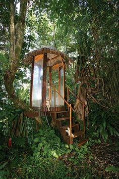"""This outdoor shower on the Kahua Institute property is set in the lower branches of a tree: A thatched roof, durable bamboo and plexiglass panels shelter the bather from wind and rain, but retain the view.      This being Huelo, the retreat is ""off the grid""; the Decostends rely on water catchment, solar batteries for lights, and propane that heats water instantly, then shuts off when not in use."""