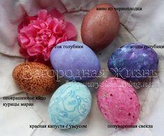Крашеные яйца на Пасху. Красители для яиц