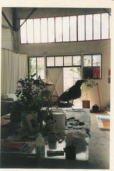 studio, Michèle Riesenmey