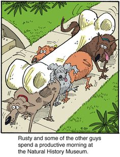 """""""Rudy and some of the other guys spent a productive morning at the Natural History Museum."""" The power of teamwork. ;) Ballard Street Comic Strip on GoComics.com"""