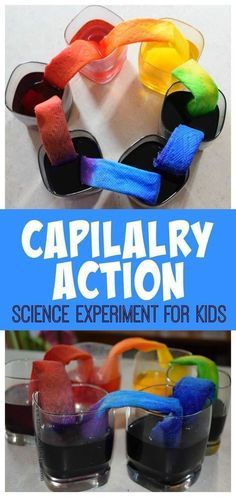 Capilalry Action Science Experiment for Kids - This is such a fun way for kids to explore and learn with a hands on science project for toddler preschool prek kindergarten first grade grade grade grade grade grade. EASY and QU Science Week, Summer Science, Science Projects For Kids, Preschool Science, Summer Activities For Kids, Teaching Science, Science For Kids, Preschool Activities, Toddler Preschool