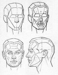 drawing the human head Anatomy Sketches, Anatomy Drawing, Anatomy Art, Head Anatomy, Drawing The Human Head, Drawing Heads, Drawing Faces, Realistic Drawings, Art Drawings