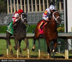 Big Brown and Eight Belles closing in on the finish line at the Derby...