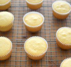 Receta de cupcakes básicos de vainilla, descansando sobre una rejilla para enfriarse antes de decorar