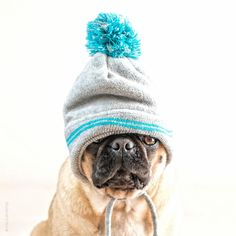 Ready for winter!
