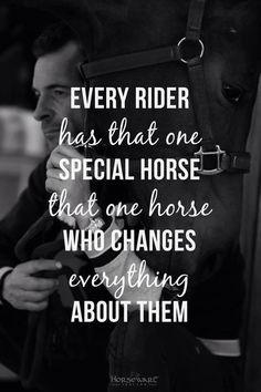 www.eqwo.net #eqwonet #zitat #spruch #saying #pferdesport #equestrian #horse #horses #pferd #pferde #reiten #horseriding #riding #rider #riders #passion #motivation #lifestyle #leidenschaft #passion #hobby #freizeit #qualitytime