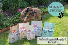 Purina Beyond Simply 9 | Hundetrockennahrung | Susi und Kay Projekte Purina Beyond Simply 9 ist bald im Handel erhältlich. Sunny durfte schon testen, was haltet ihr von dem Futter? Schreibt es doch gerne in die Kommentare. Würdet ihr es eurem Hund füttern und habt Lust auf ein Gewinnspiel?  #beyonddog #simply9 #nur9zutaten #produkttester #Dog #Beyond #Purina #Produkttest #Test #Hundefutter #Hund #Hundetrockennahrung #futtertest #Huhn #Lamm #Lachs  #nestlepurina