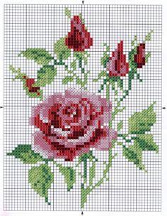 cadru_Roses_1