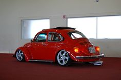 VW... 81' Ragtop