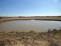Excellent pasture approximately 75%. Timber. 4+ ponds. Perimeter and cross fenced. Highway divides property in Raymondville MO