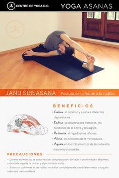 JANU SIRSASANA · Postura de la frente a la rodilla |Beneficios de la práctica de Yoga por Diego Cano