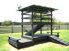 Goat Ladder And Shelter But I Would Get Rid Of The Grass For Worm Control