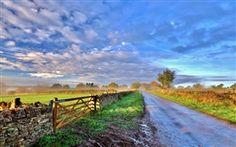 Himmel, wolken, morgen, Straße, Zaun, Bäume, Gras Hintergrundbilder Bilder Fotos