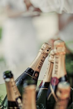 Moet Chandon, Champagne Moet, Champagne Party, Champagne Bottles, Gin, A Little Party, Nouvel An, New Years Eve, Happy New Year