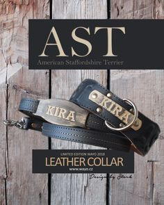 Leather collar AST
