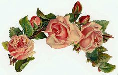Flowers624