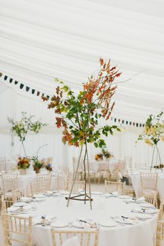 Autumnal tripod table centres by Pyrus (kitchenerphotography.co.uk)