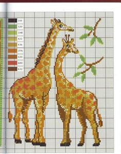 Gallery.ru / Фото #57 - Animaux - Mongia Cross Stitch Bird, Cross Stitch Animals, Counted Cross Stitch Patterns, Cross Stitch Designs, Cross Stitch Embroidery, Loom Patterns, Quilt Patterns, Cross Stitch Pictures, Sewing Art