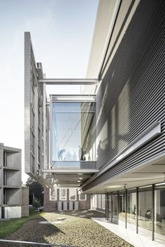 Harvard Art Museums Renovation and Expansion / Renzo Piano Building Workshop + Payette