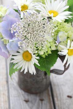 Daisy arrangement