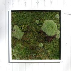 This is the design inspiration for our moss wall art piece. Moss Wall Art, Moss Art, Wood Paneling, Design Inspiration, Design Ideas, Shades Of Green, Art Pieces, Handmade Gifts, Frame