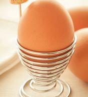 Egg-Septional News For Egg Lovers!