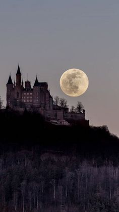 Here come the werewolves! Beautiful Castles, Beautiful Moon, Beautiful Places, Fantasy World, Dark Fantasy, Akali League Of Legends, Dark Castle, Slytherin Aesthetic, Light In The Dark