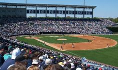 The Yankees gear up for the 2015 season during Spring Training at George M. Steinbrenner Field
