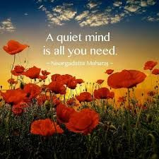 A quiet mind is all you need - Nisargadatta Maharaj Image: Tao & Zen Om Namah Shivaya, Buddha, Hippie Peace, Inner Peace, Peace Of Mind, Anxious, Picture Quotes, Mindfulness, Inspirational Quotes